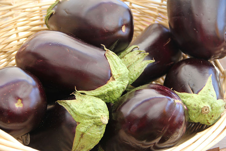 Eggplants are very versatile and have many and varied uses