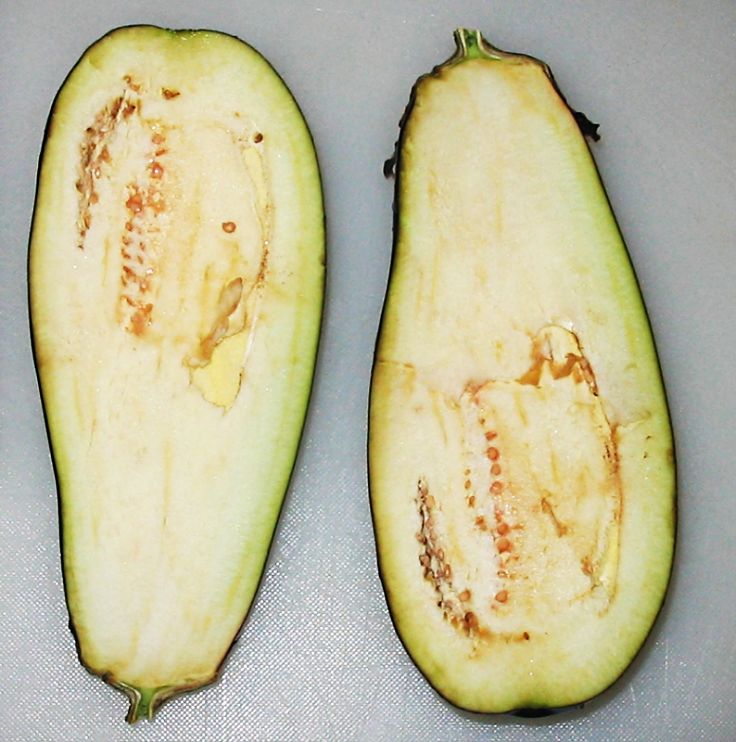 Eggplants often have unusual shapes and forms