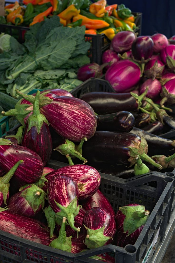 Aubergines come in many varieties. Some types are better suited for various uses.