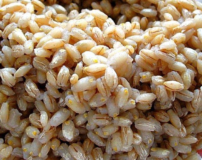 Though seldom used, Barley has many health benefits due to its outstanding nutrient content