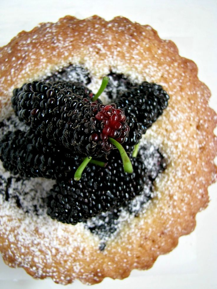 Mulberry, orange and almond tarts are delicious and so easy to make with fresh mulberries