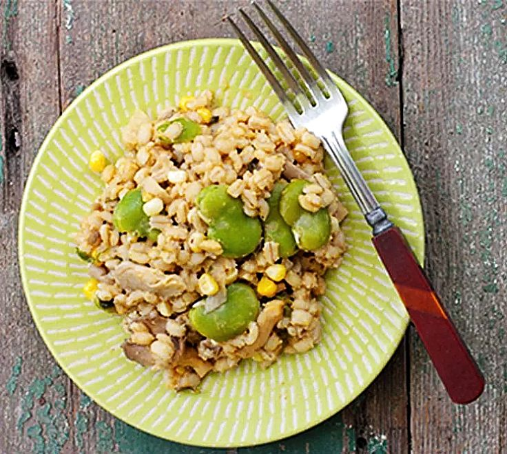 Barley Risotto with nutrients boosted by the addition of steamed broad bean seeds. See a nutrient summary in this article