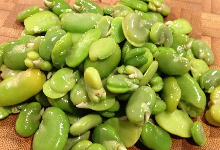 Fava beens are delicious and have a lovely color and texture that suits a wide range of dishes. See the fabulous range of recipes in this article