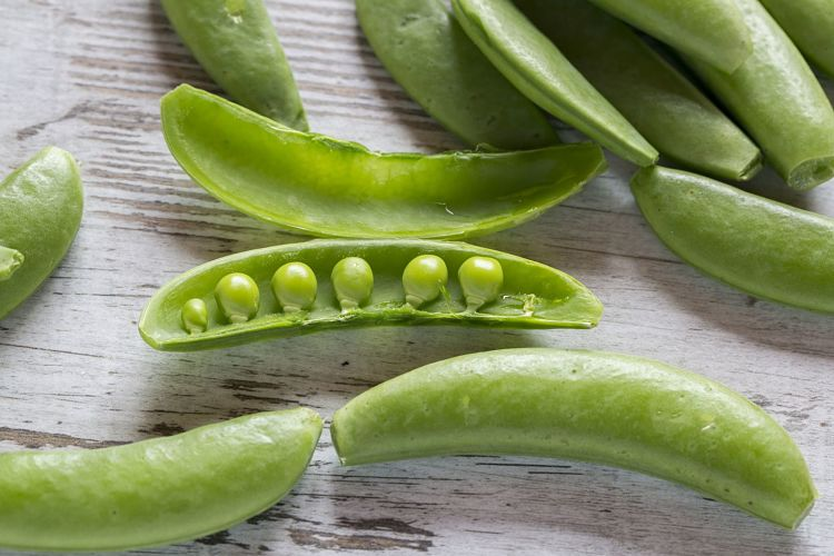 Sugar snap peas are a delightful combination of green peas, where you can eat the pods. Their nutrition is a combination as well