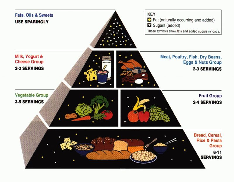 1992 Food Pyramid - one of the first