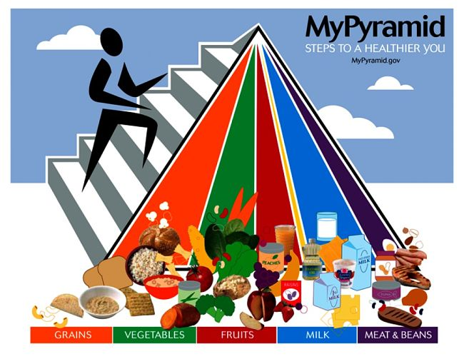 MyPyramid since replaced by MyPlate as a Government initiative