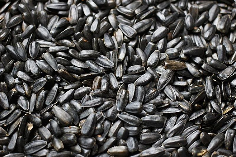 Sunflower seeds. Wow! so nices and versatile