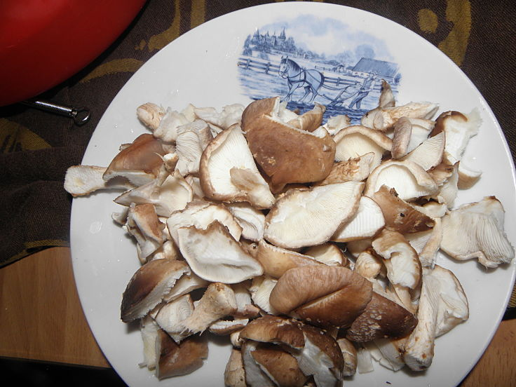Shiitake mushrooms are very versatile and healthy - see the fabulous recipes here